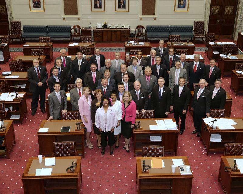 Senators in the pink