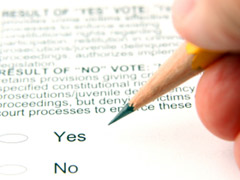 Blog voter id